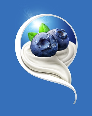 Mueller Yogurt