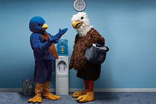 Conceptual photo of eagle and bird at water cooler.