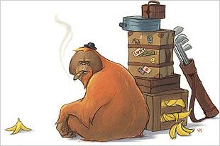 Humorous illustration of ape smoking cigar.