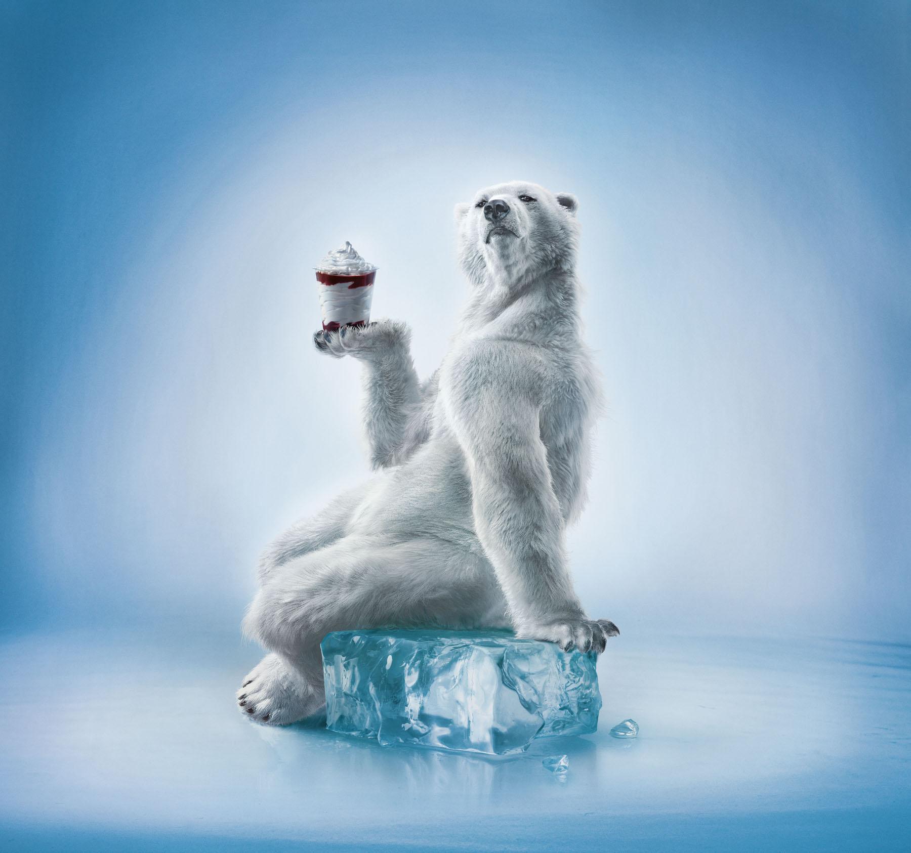 Polar Bear holding smoothie.
