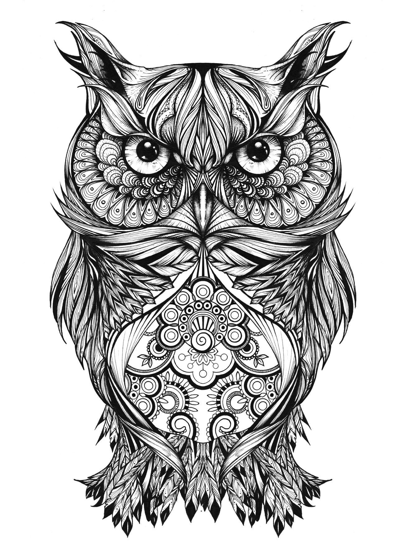 Decorative illustration of owl.