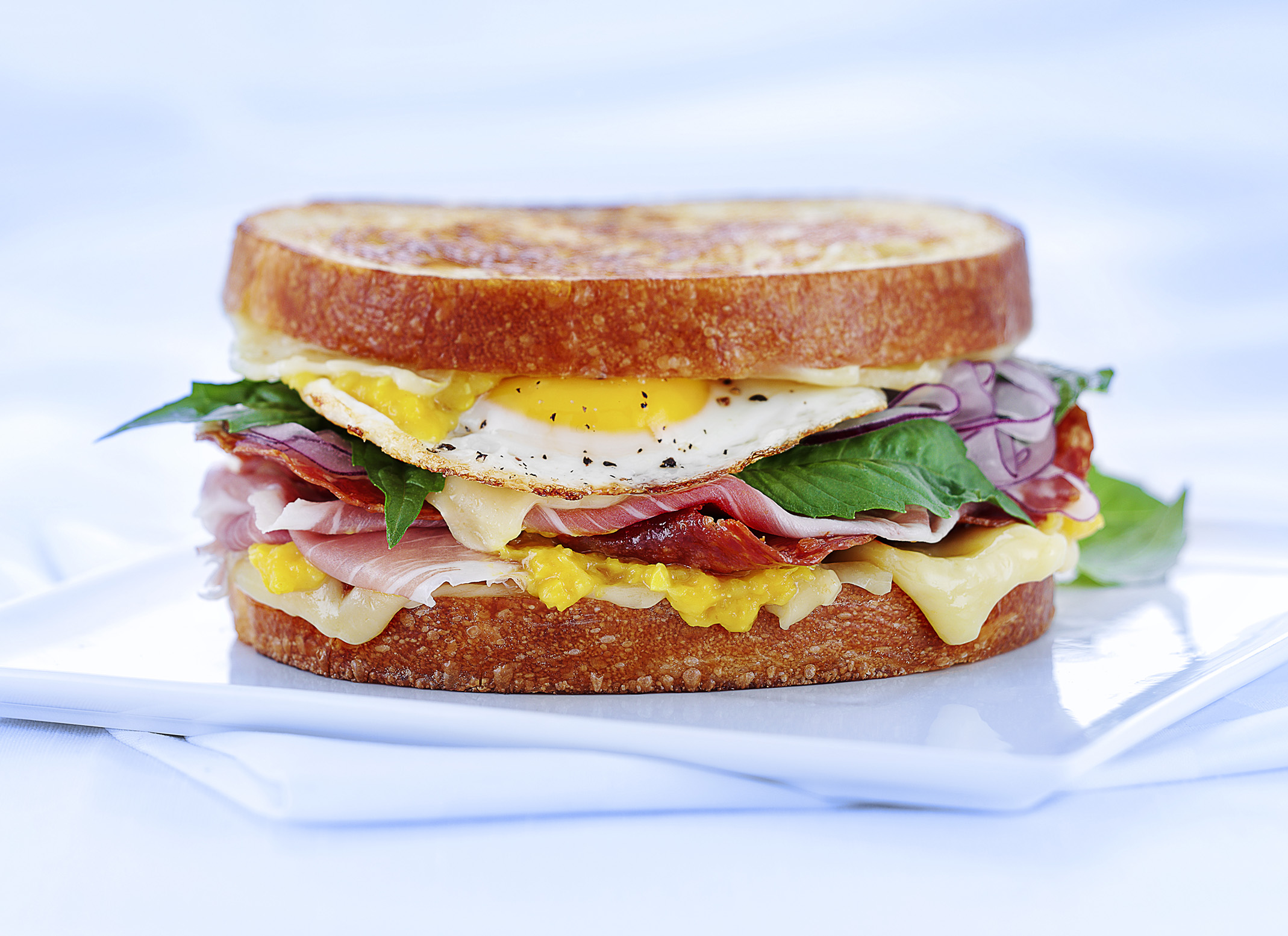 Photo of egg sandwich