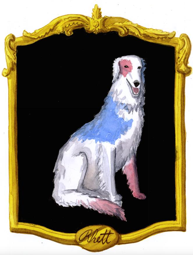 Borzoi portrait in a frame