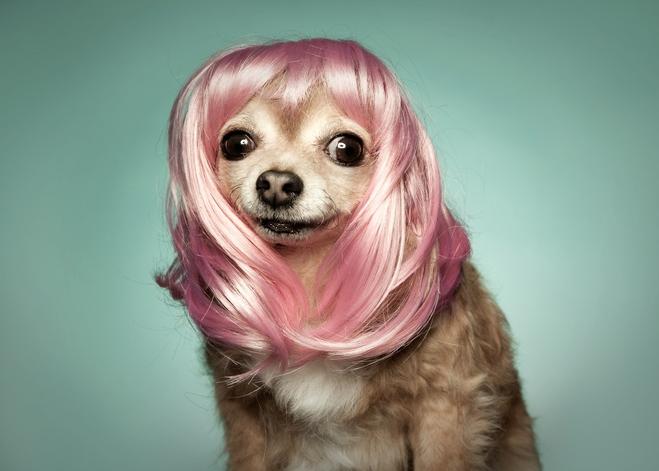 Little og in a pink wig.