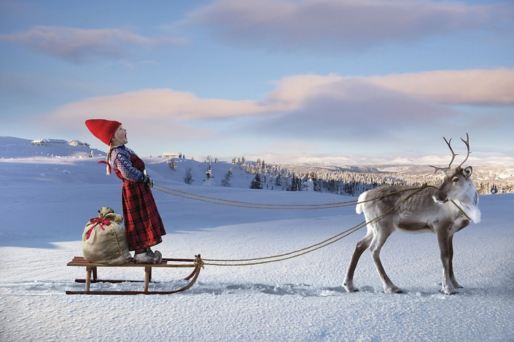 Girl on sled with Reindeer