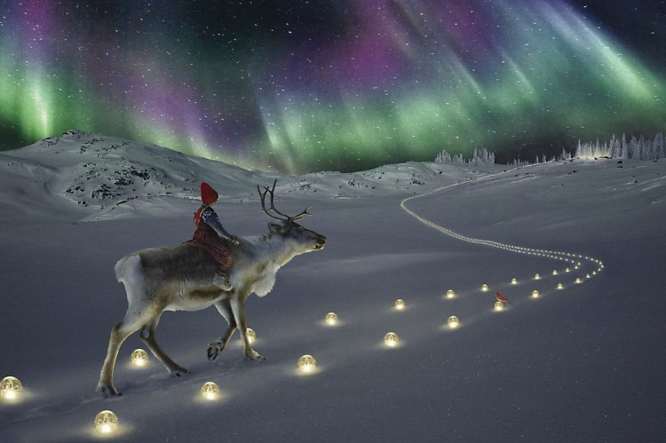 Girl riding on Reindeer  Northern Lights